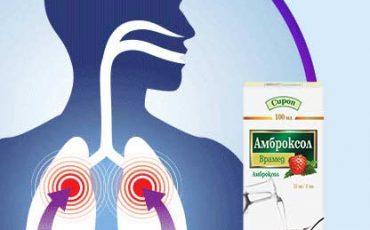 Применение Амброксола в терапии респираторных заболеваний