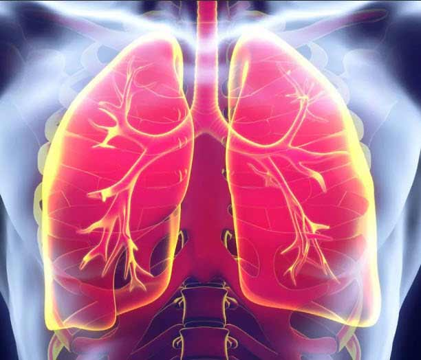 Применение Амброксола при различной респираторной патологии